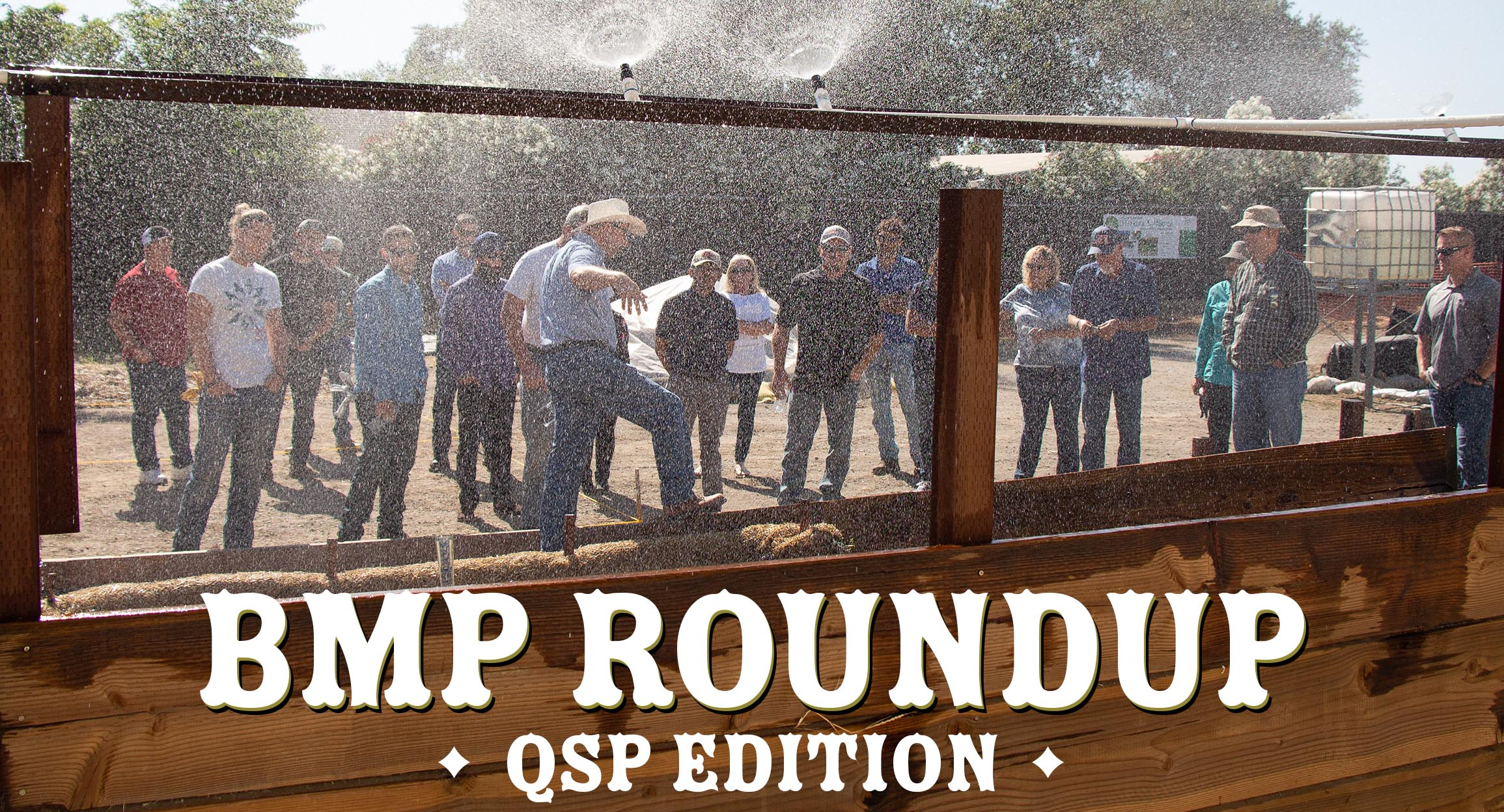 BMP Roundup (QSP Edition) – June 13, 2019